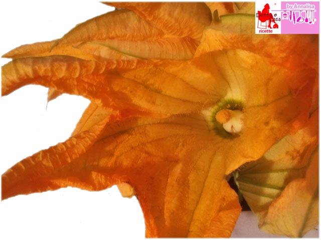 Zucchini flower